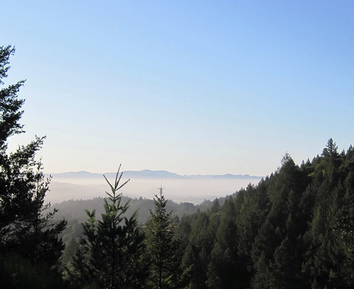 View of Napa Valley from near Coyote Peak