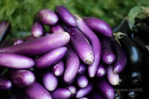 Eggplant, San Francisco Ferry Building Marketplace Farmers' Market