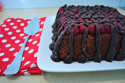 Raspberry Chocolate Cake-1