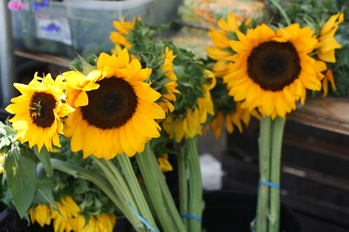 Tenafly Farmers Market, July 19, 2009 by you.