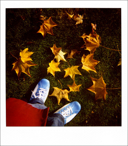 New blue shoes and yellow leaves