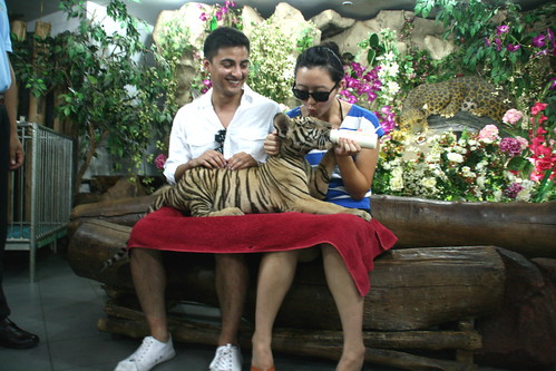 shawn and i holding a BABY TIGER.