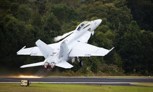 F/A-18E/F Super Hornet Straight Up