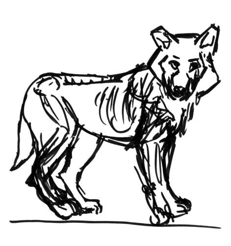 wolves, part 5