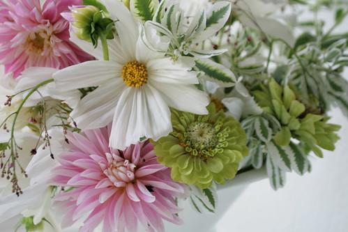 Euphorbia Summer Icicles in arrangement