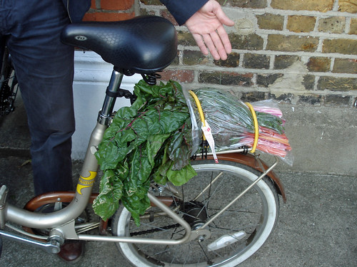 How to Transport Swiss Chard