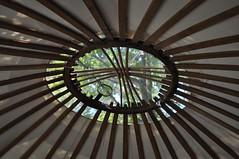 Press yurt