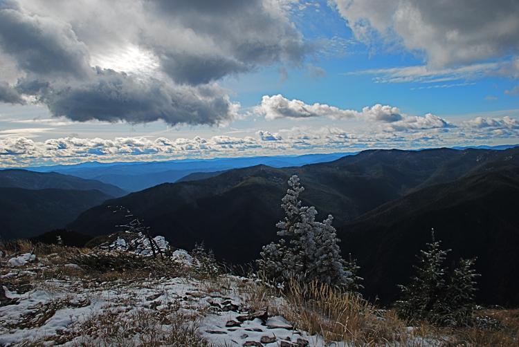 Priscilla Peak