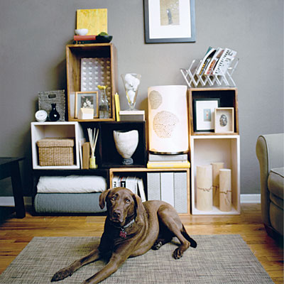clutter-control-cubes-dog-l