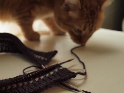 ren plus knitting