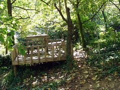Dreamy picnic spot
