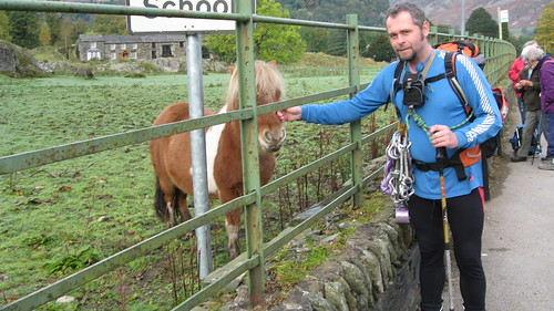 Making friends with the locals in Patterdale