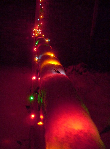 Snow on the porch rail and Christmas lights