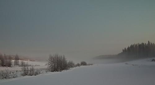 Freezing frost