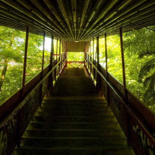 The Green Future - Photo : Gilderic (Bratislava, Slovaquie)