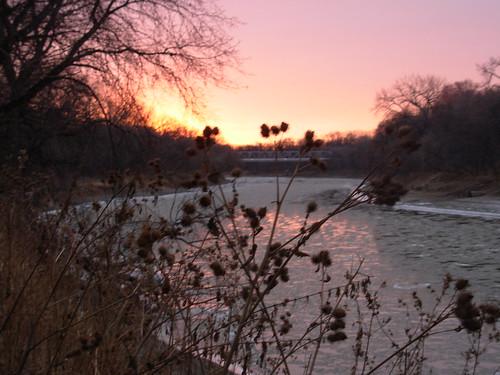 river nov 26 2009 002