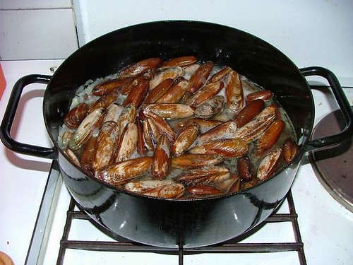 Date-shells cooking
