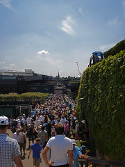 Wimbledon - The Hordes