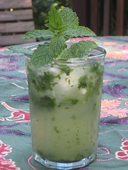 Tim's Famous Mojitos