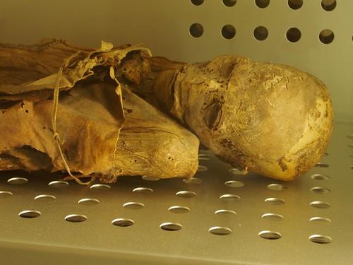 Mummified Guanche at Museum of Man & Nature