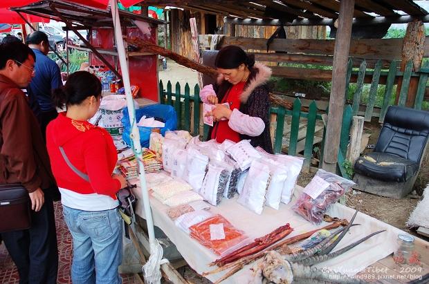西藏林芝世界柏樹王園林18.jpg