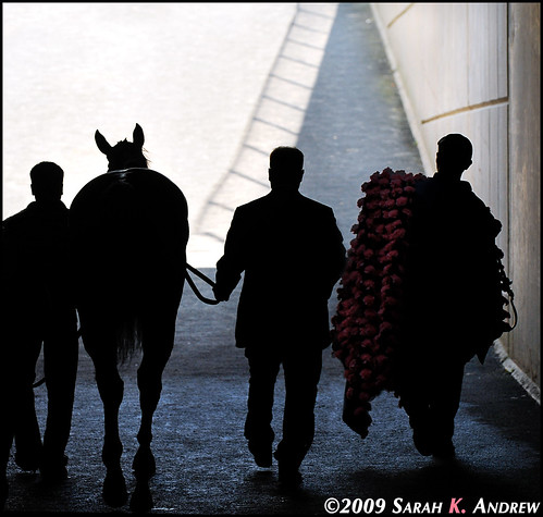 Out of the Tunnel: Rachel Alexandra and Her Entourage