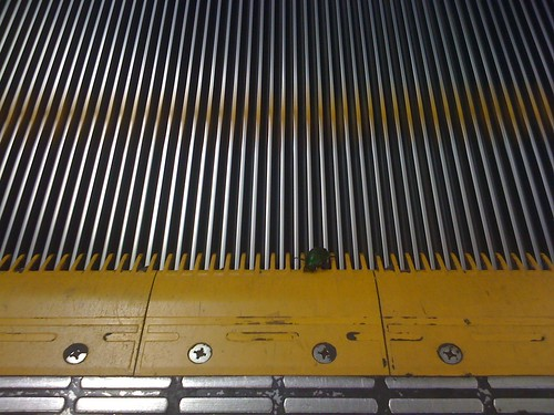 bug and escalator
