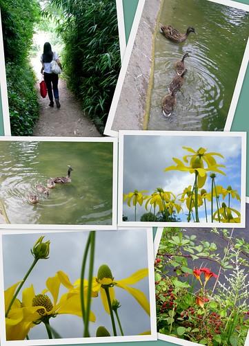 2009 July 25 - Bois de Boulonge4
