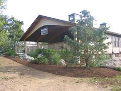 8/4/09 Plantings