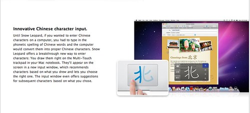 Snow Leopard - Chinese character input by you.