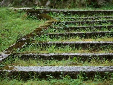 道風神社の階段