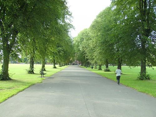 nice avenue