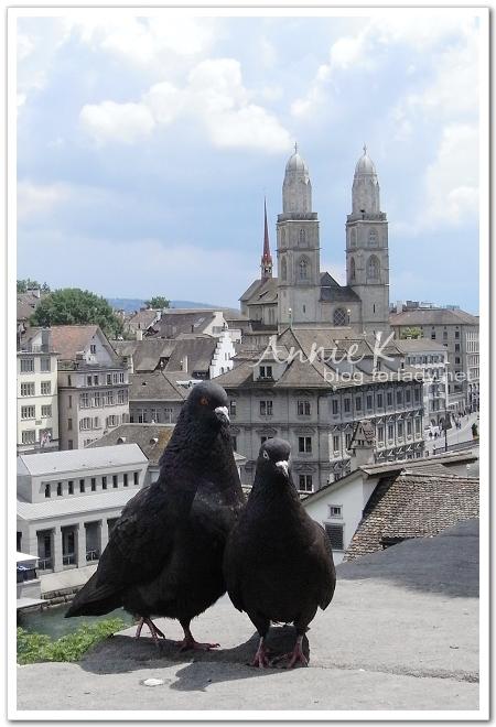 Zurich,Lindenhof