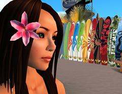Caroline's Lily hair clip