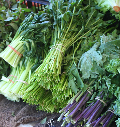 Tenafly Farmers Market, July 12 2009 by you.
