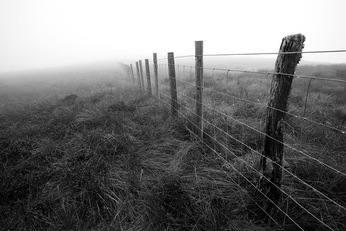 The fence line disappearing into the mist