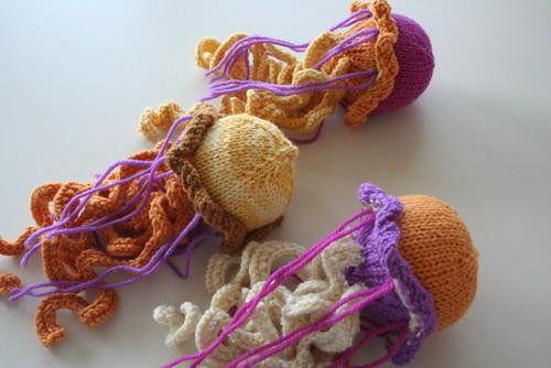 for Rav: jellyfish