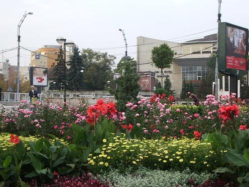Romania 2007 (16) 007