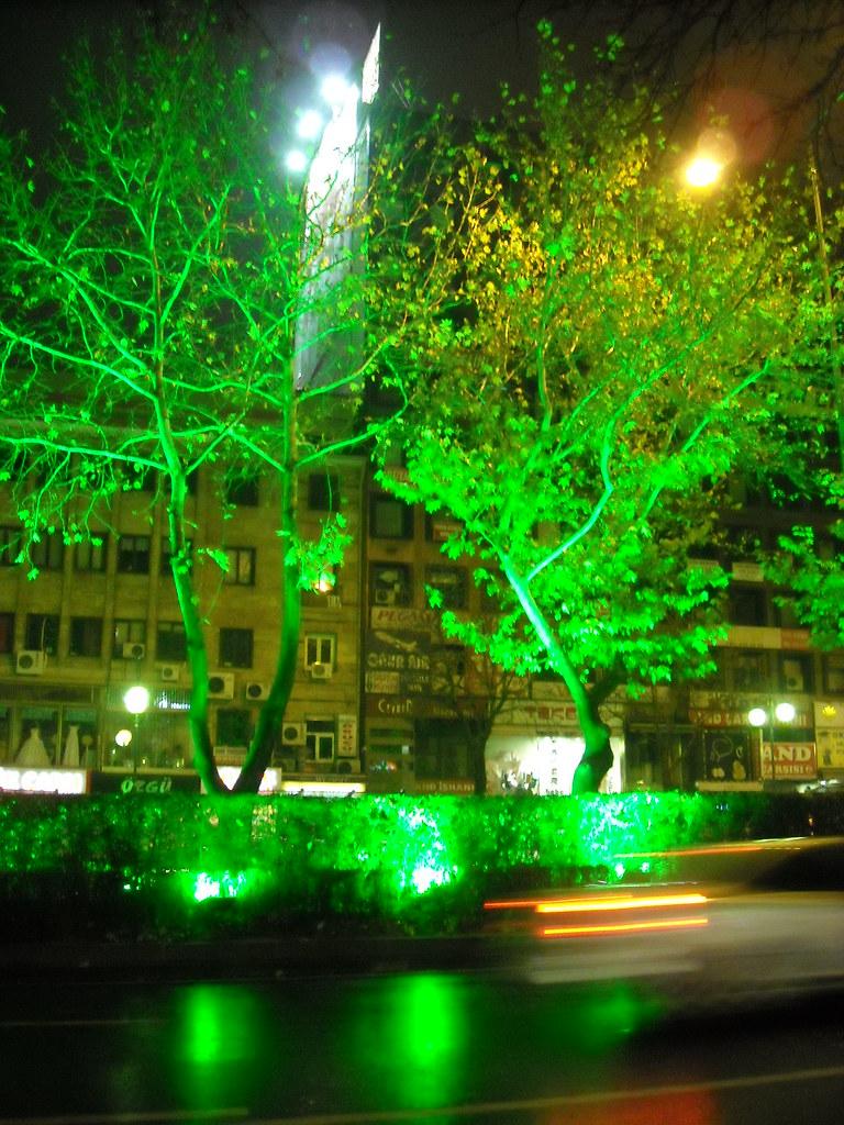 Green Lights, Green Trees - Ankara