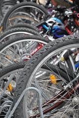 school bike park