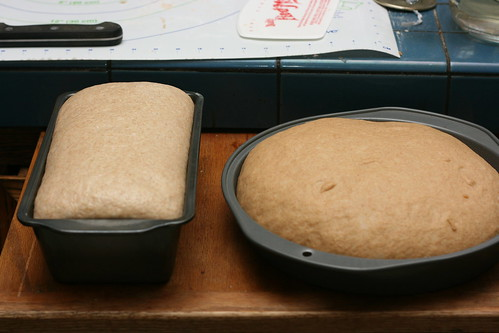 Almost Ready for the Oven!