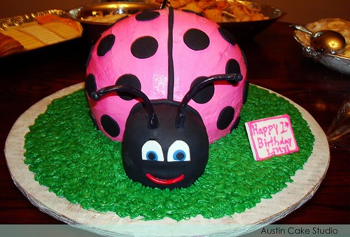 Lady Bug Birthday Cake