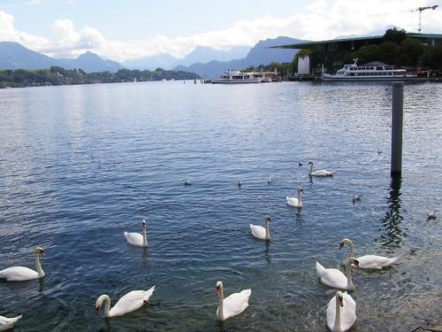 Foto del lago del que no he llegado a saber nunca el nombre...