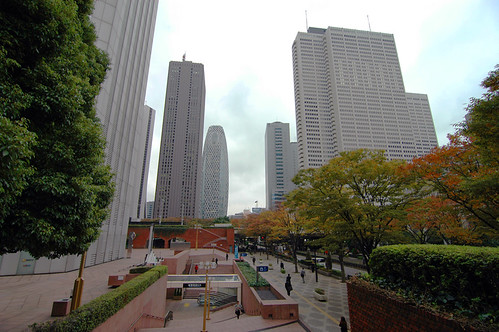 On the way to Tokyo Metropolitan Building