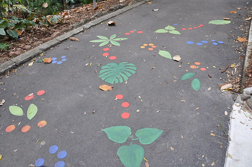 Childrens trail leading to special surprises...