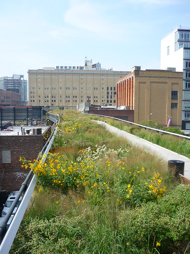 The High Line Park walk