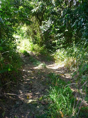 Trail to Cueva Ventana