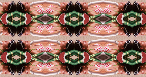 Kaleidoscope Experiment 1