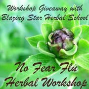 Workshop Giveaway with Blazing Star Herbal School in Ashfield
