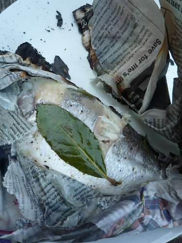 Fish in Newspaper by you.
